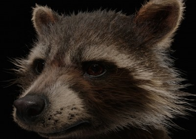 Guardians of the Galaxy VFX Visual Effects Breakdown Rocket Texture Headshot