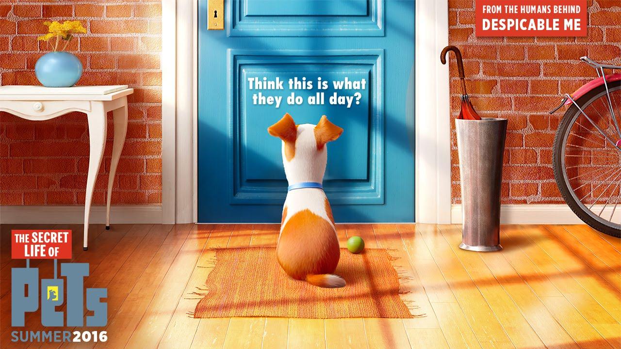 The Secret Life of Pets Trailer - Illumination Entertainment