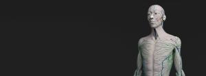 reonie-bothma